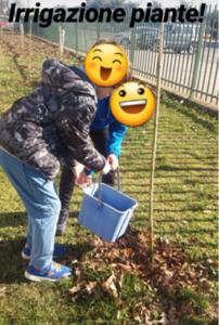 Operazione irrigazione iniziata.